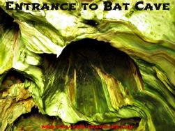 Bat Cave at Gunung Reng