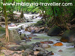 River at Ampang Forest Reserve