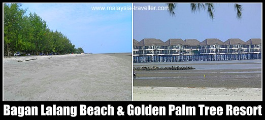 Bagan Lalang Beach and Golden Palm Tree Resort & Spa