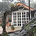 Bukit Larut Hill Resort
