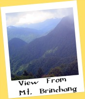 View from Mt. Brinchang, Cameron Highlands