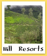 Hill Resorts