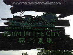 Farm In The City, Malaysia