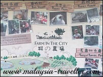 Farm In The City, Malaysia