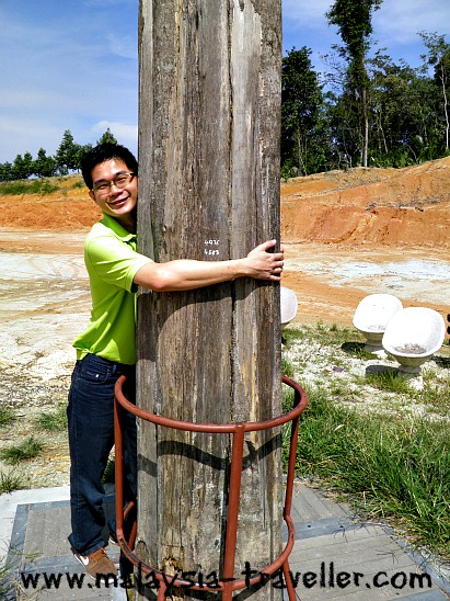 Tree Hugging at Gaharu Tea Valley