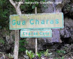 Gua Charas, Pahang, Malaysia