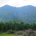 Gunung Datuk