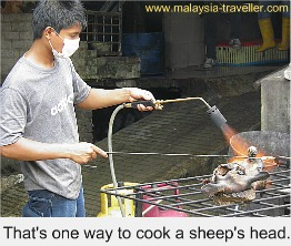 Sheep Searing?