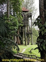 Lookout Tower