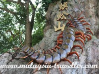 Centipede Temple, Seremban