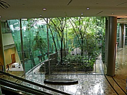 Internal Garden at PICC