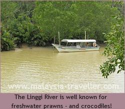 Linggi River at Pengkalan Kempas