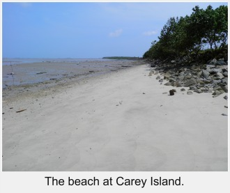 The beach at Carey Island