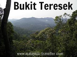 View from Bukit Teresek, Taman Negara