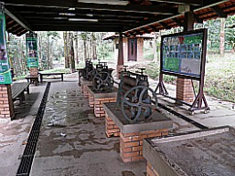 Rubber Production Demonstration area