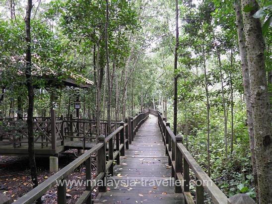 Boardwalk at Tanjung Piai
