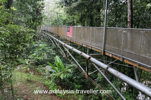 Tree Top Walk Sungai Sedim