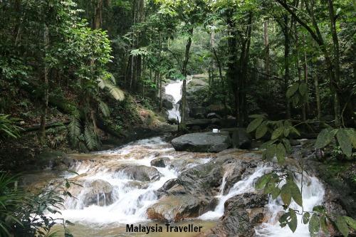 sungai tekala recreational forest