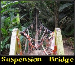 Damaged Suspension Bridge at Bukit Gasing.