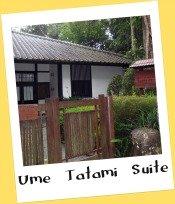 Ume Tatami Suite, Bukit Tinggi
