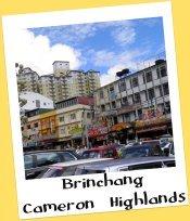 Brinchang, Cameron Highlands, Malaysia