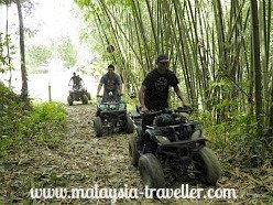 All Terrain Vehicles at Commonwealth Forest Park