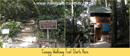 The trail to the FRIM Canopy Walk starts here.