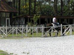 Fraser's Hill Horse Riding