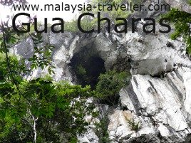 An upper cave at Gua Charas