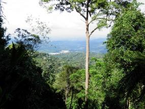 View from Gunung Telapak Buruk