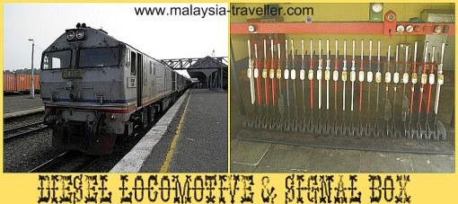 Jungle Railway