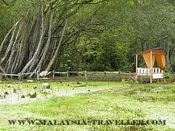 Taman Ikan Air Tawar