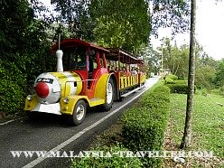 Tram Ride at Bukit Melawati