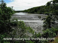 Kuala Selangor Wetlands