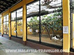 Cages at Langkawi Bird Paradise