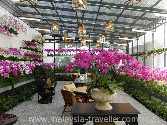 Orchid Conservatory at the Majestic Hotel Kuala Lumpur