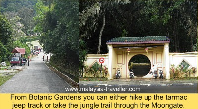 Where to start your Penang Hill hike
