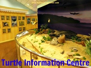 Turtle Information Centre, Rantau Abang