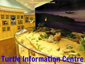 Turtle Information Centre, Rantau Abang