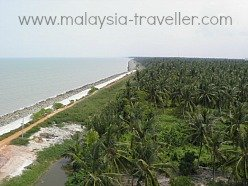 Photo of coastline at Sekinchan taken from the observation tower at the Sekin Fisherman Village Hotel and Resort