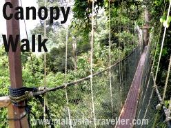 Canopy Walk at Taman Negara