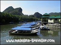 Mangrove River Cruise