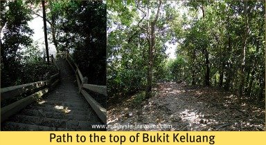 Path to the top of Bukit Keluang