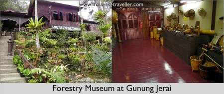 Forestry Museum at Gunung Jerai