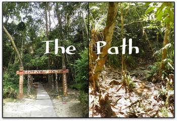 Kanching Rainforest Waterfall Path