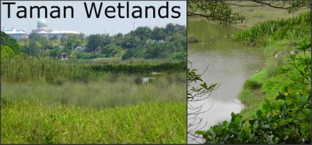 Taman Wetlands